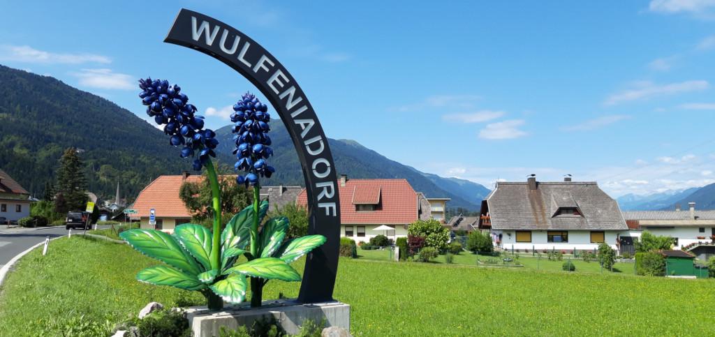 Wulfenia: Wurde 1779 am Gartnerkofel entdeckt und wächst nur hier und im Himalay